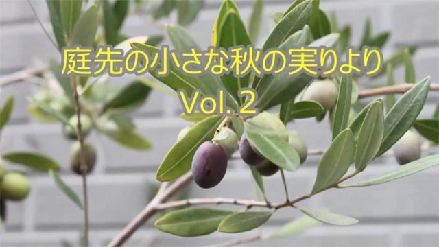 庭先の小さな秋の実りよりVol.2