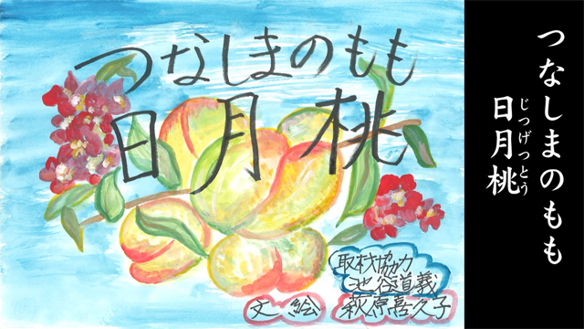 綱島の桃 日月桃